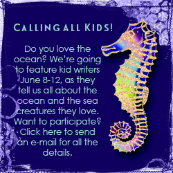 world oceans day call for kids essays