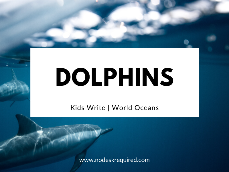 Dolphins | Kids Write