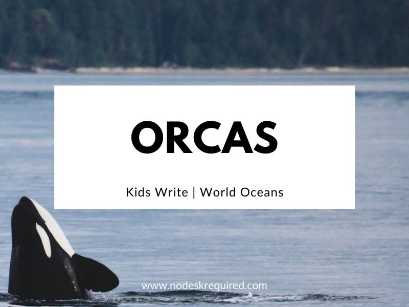 Orcas | Kids Write
