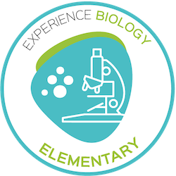 experience biology homeschool science elementary